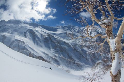 Niseko Guiding Powder Hound Tour