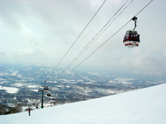 Niseko Lift Passes